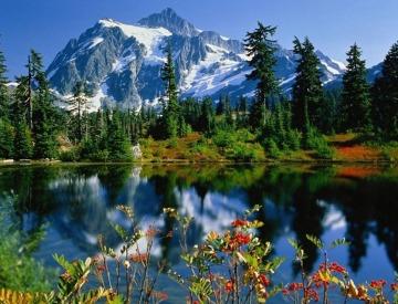 Armonía de la naturaleza.
